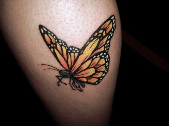 A Very Lovely 3D Butterfly Tattoo