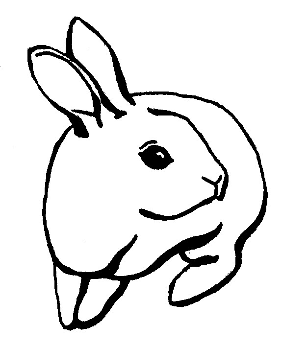 Again The Rabbit Tattoo Design