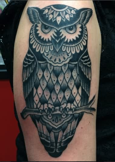 An Owl Sitting On Branch Tattoo On Arm