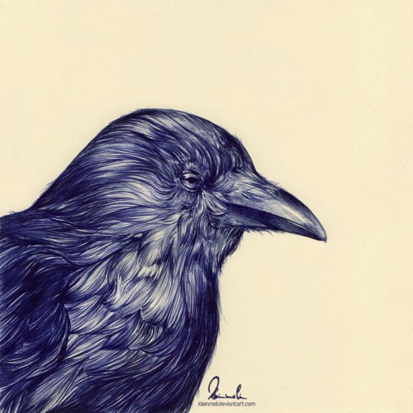 Ballpoint Pen Black Crow Tattoo Print