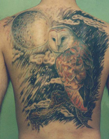 Barn Owl Sitting On Tree Tattoo On Back