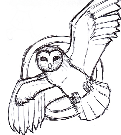 Barn Owl Tattoo Sketch