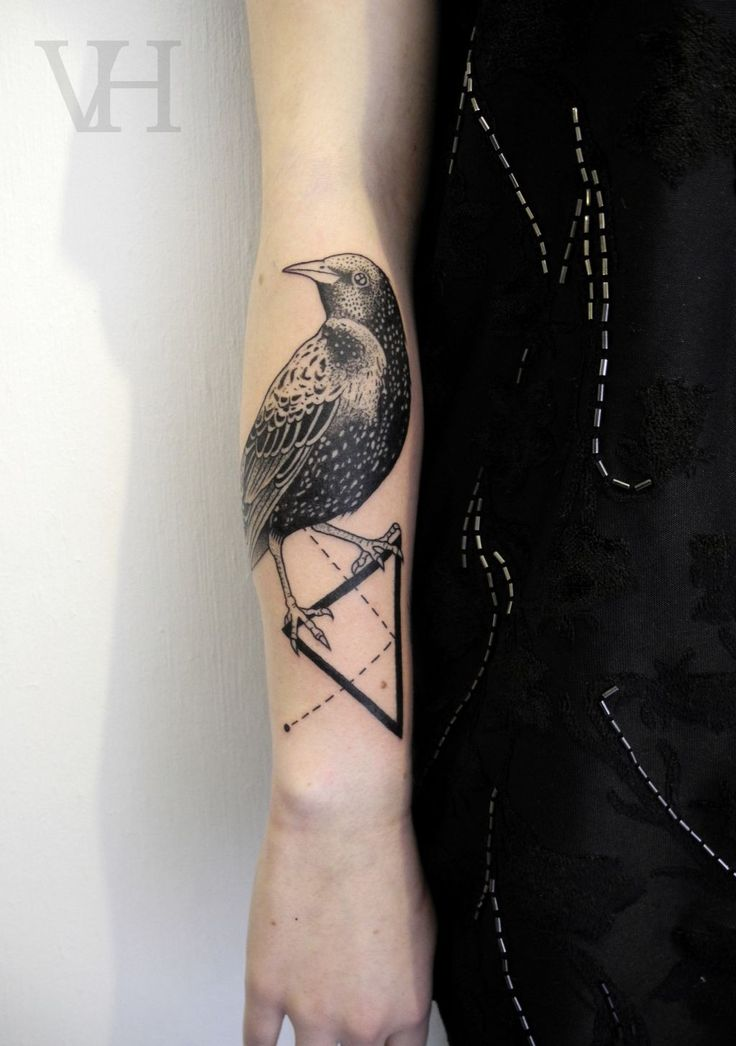 Bird On Geometric Triangle Tattoo On Arm