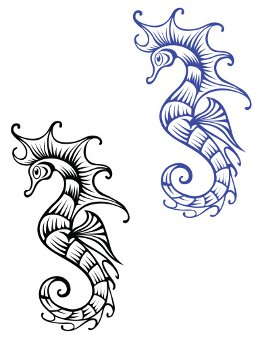 Black And Blue Seahorse Tattoo Designs