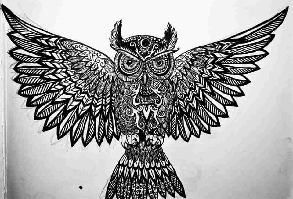 Black Open Wings Owl Tattoo Design