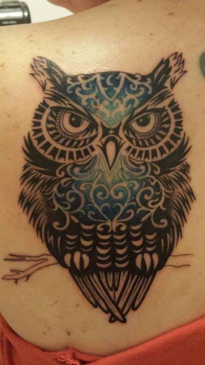 Blue-Black Owl On Branch Tattoo