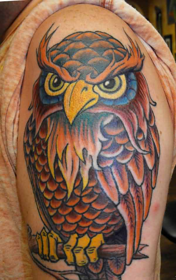 Brown Owl On Branch Tattoo On Half Sleeve