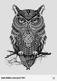 Celtic Owl On Branch Tattoo Design
