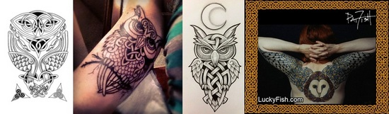 Celtic Owl Tattoos Pictures