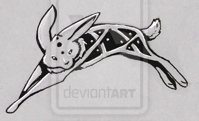 Celtic Rabbit Tattoo Design