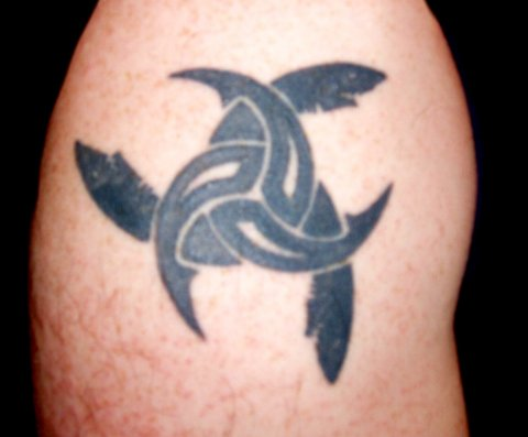 Clean Black Celtic Shark Tattoos On Shoulder