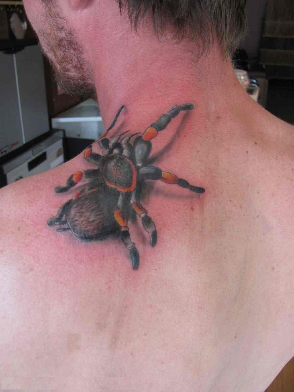 Climbing 3D Spider Tattoo Style