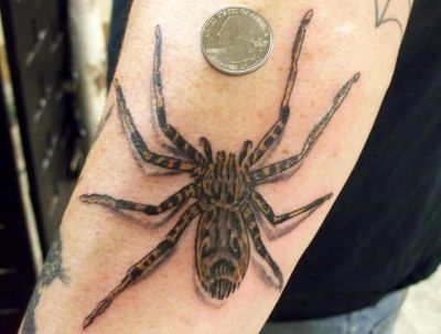 Coin And 3D Spider Tattoo