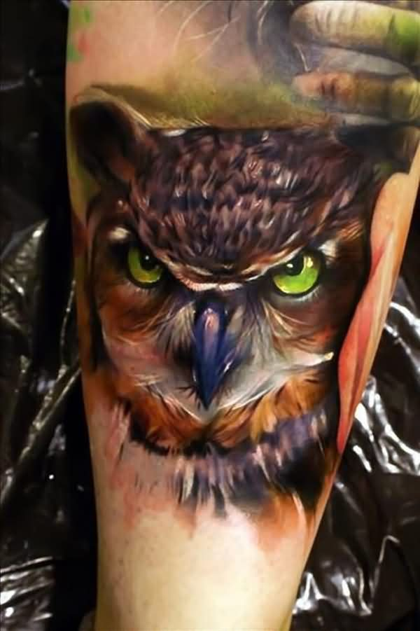 Color 3D Owl Tattoo For Men