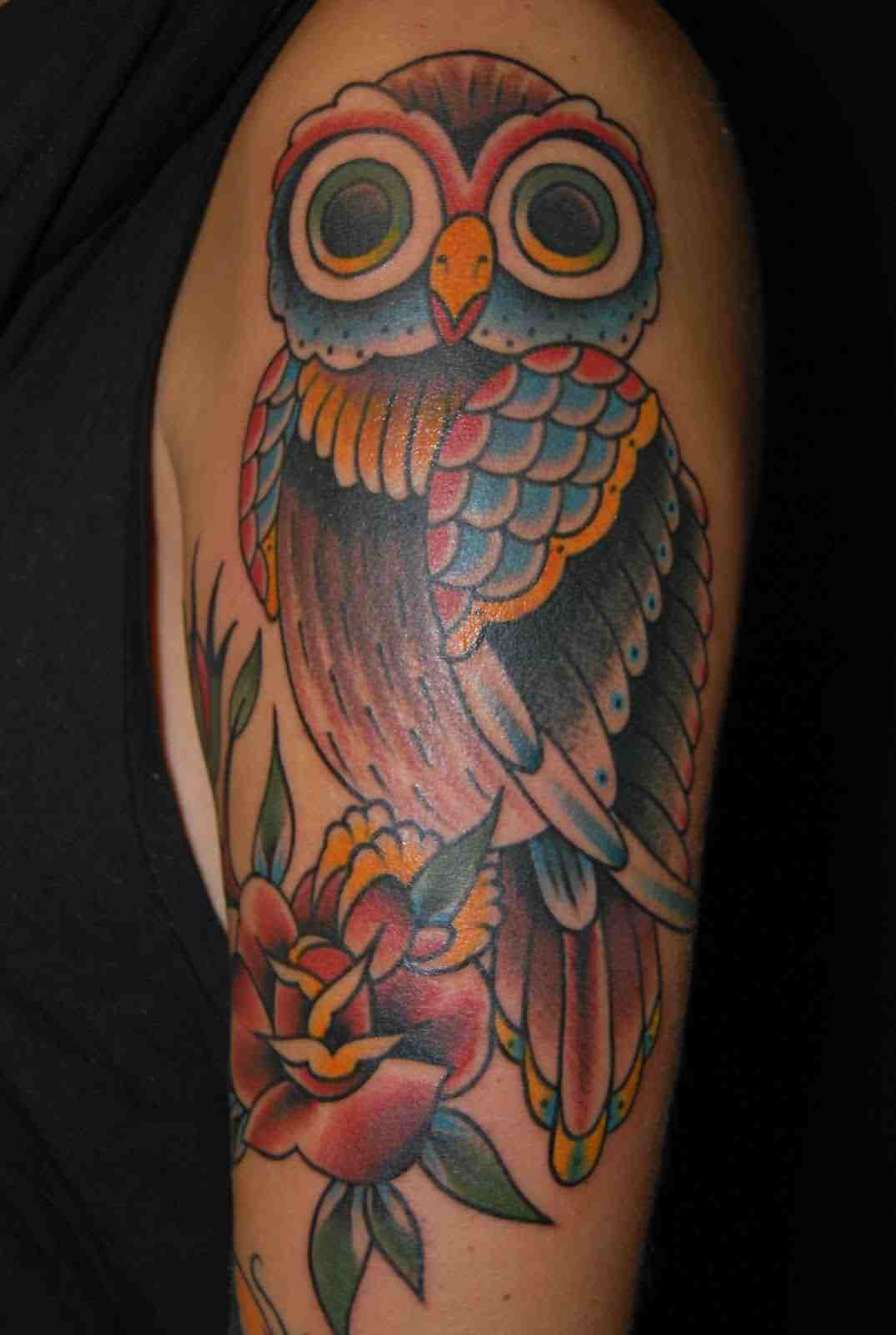 Color Owl And Red Rose Tattoos On Arm