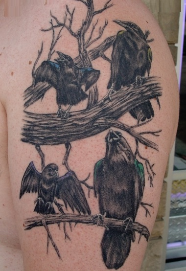 Crow Bird Tree Tattoo On Shoulder