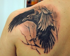 Crow On Branch Portrait Tattoo On Left Back Shoulder