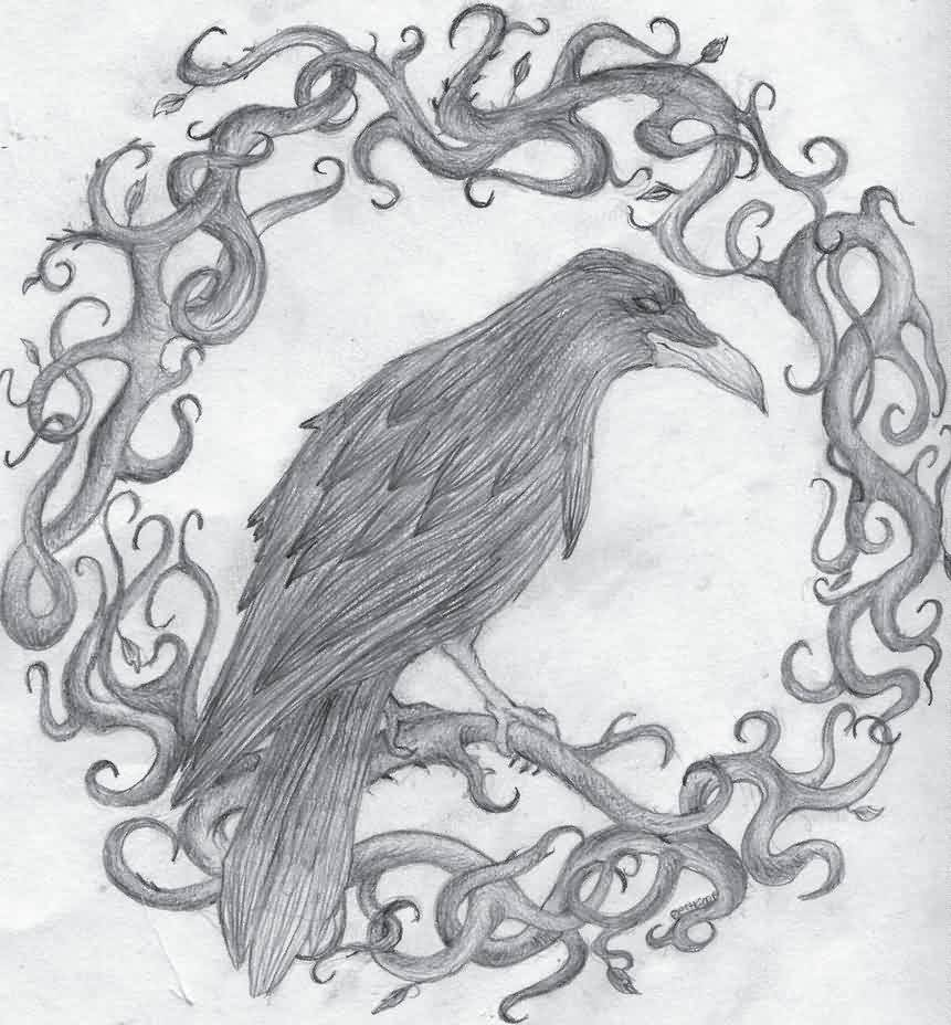 Crow On Branch Tattoo Sketch