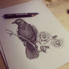 Crow On Rose Branch Tattoo Drawing