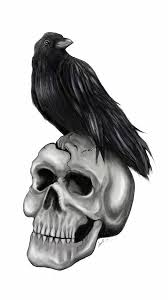 Crow On Skull Tattoo Sample