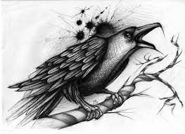 Crow On Tree Branch Tattoo Drawing