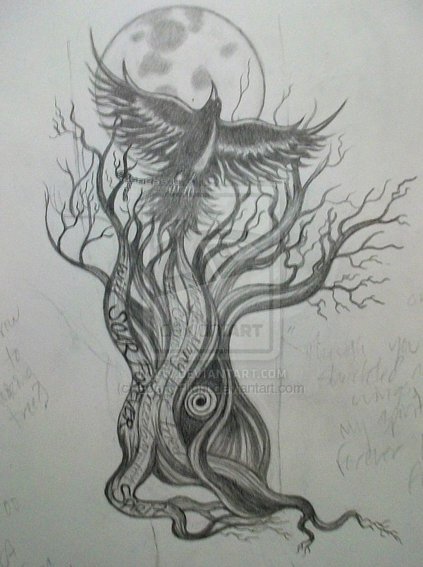 Crow On Tree Tattoo Sketch