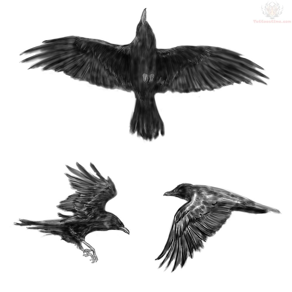Crow Tattoos Set (2)