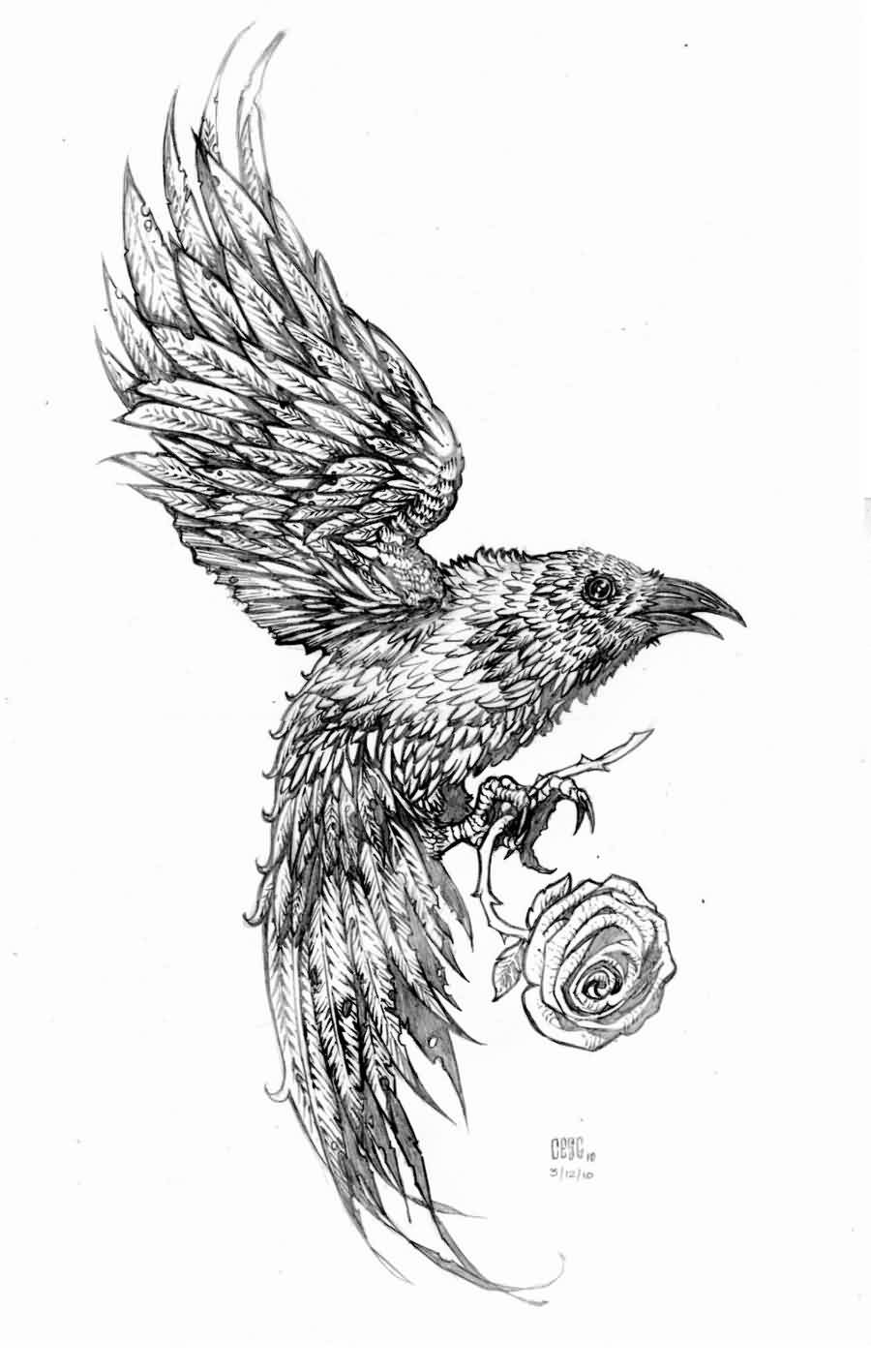 Crow With Rose Tattoo Drawing