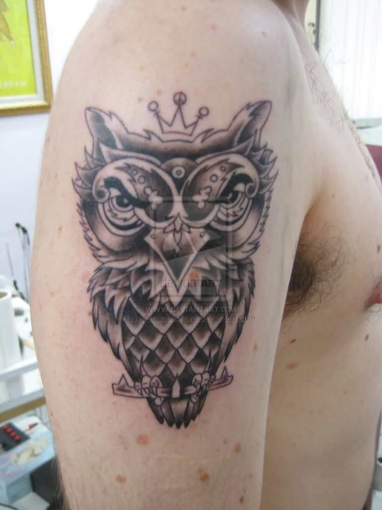 Crowned Owl Tattoo On Biceps