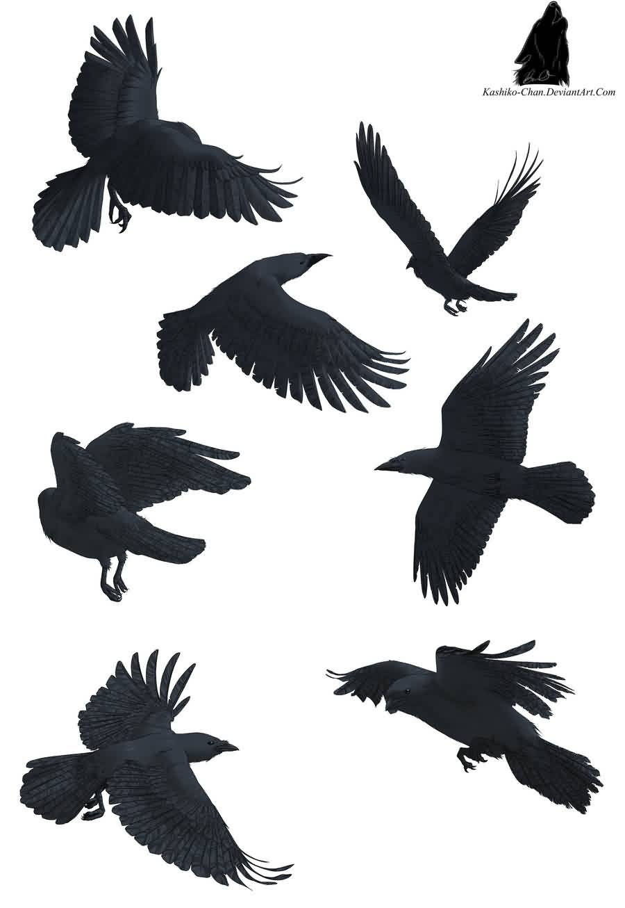 Crows Flying Tattoos Set