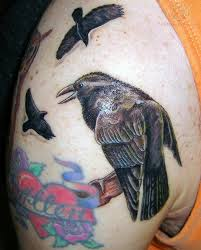 Crows Tattoos On Shoulder For Men