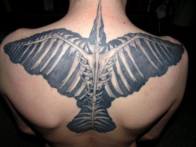 Fabulous Crow Skeleton Tattoo On Upperback
