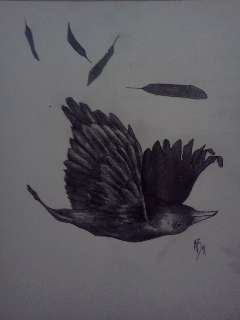 Falling Crow Tattoo Design