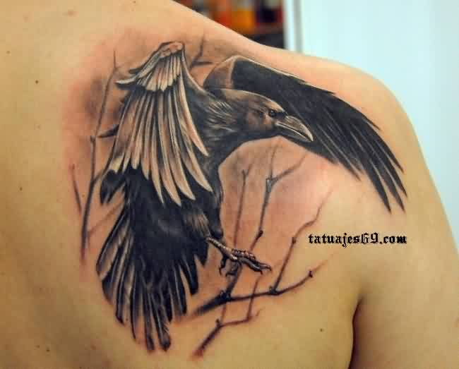 Fantastic Crow Portrait Tattoo On Right Back Shoulder
