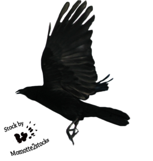 Flying Black Crow Tattoo Design