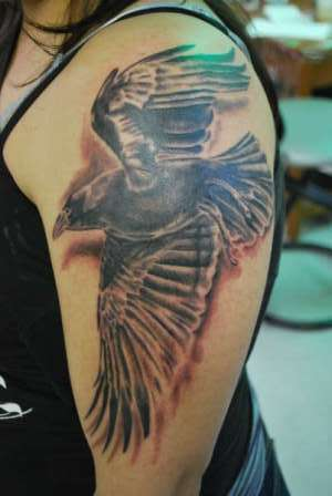 Flying Crow Tattoo On Biceps