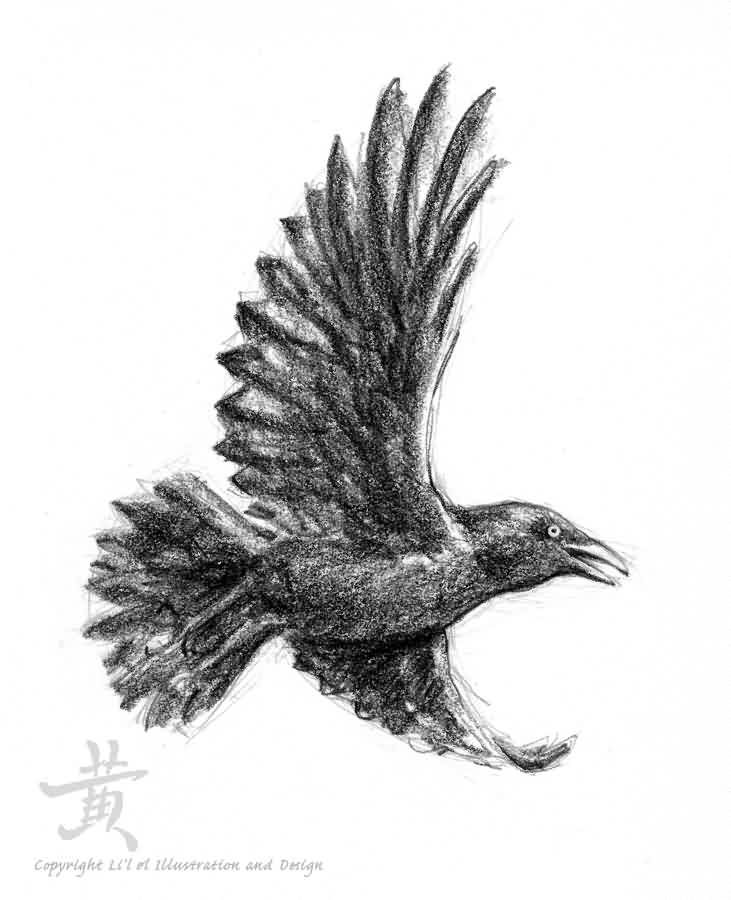 Flying Crow Tattoo Sketch