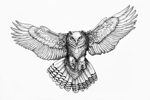 Flying Owl Tattoo Model
