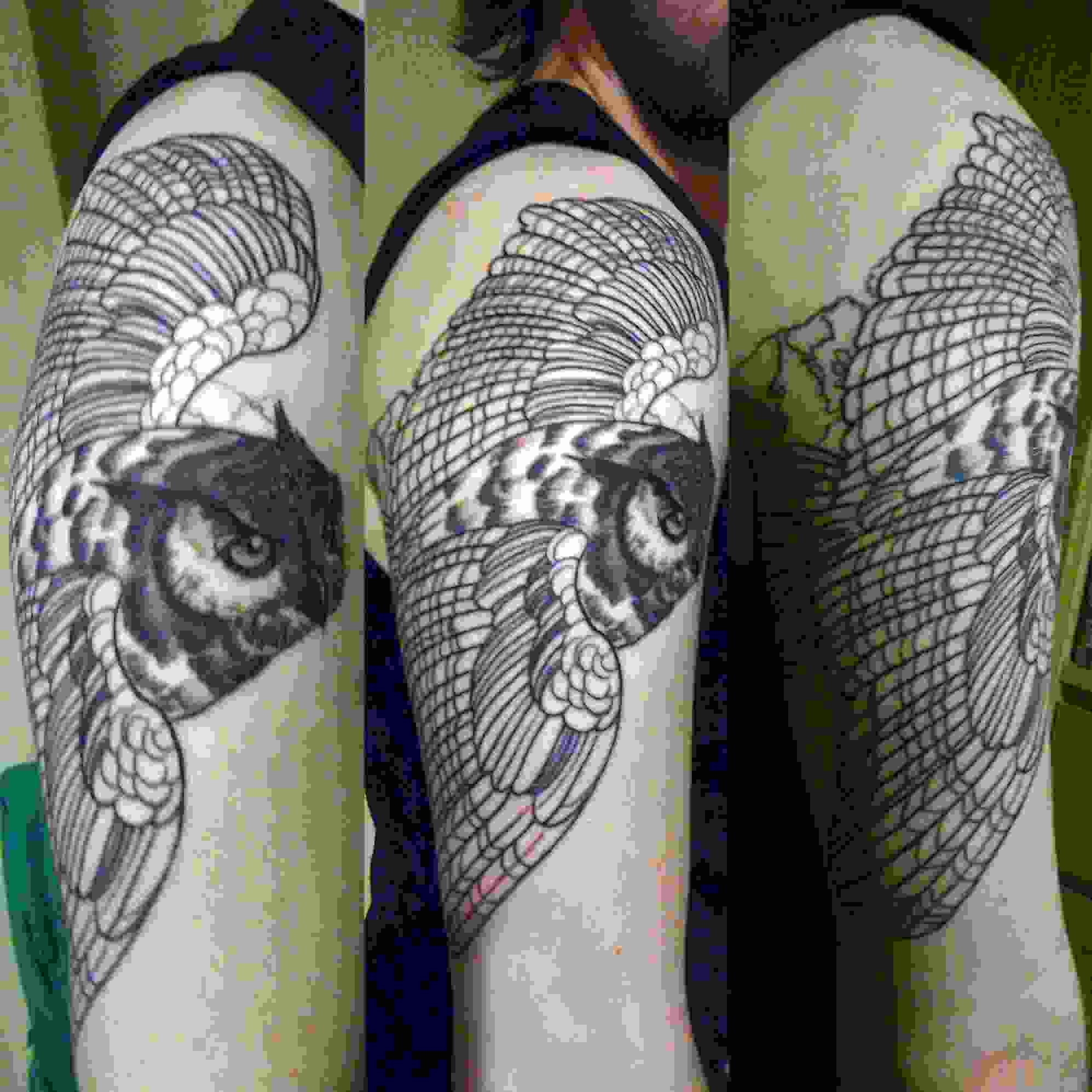 Flying Owl Tattoo On Arm
