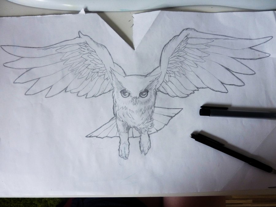 Flying Owl Tattoo Sketch