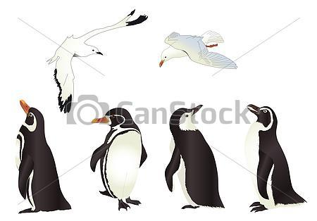 Flyins Birds And Penguin Tattoos
