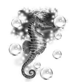Free Grey Seahorse And Bubbles Tattoo Designs