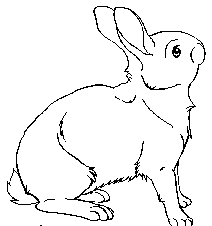 Free Rabbit Lineart Tattoo Design