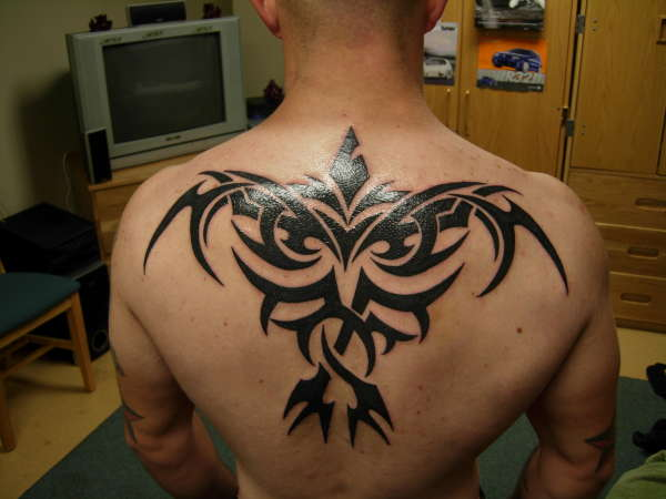 Fresh Ink Crow Tribal Tattoo On Backbody