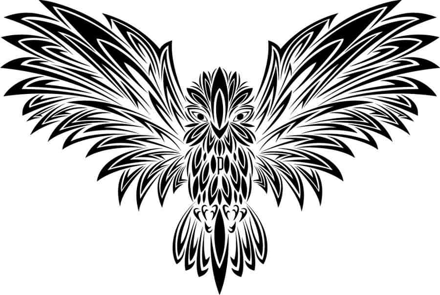 Fresh Tribal Owl Tattoo Design