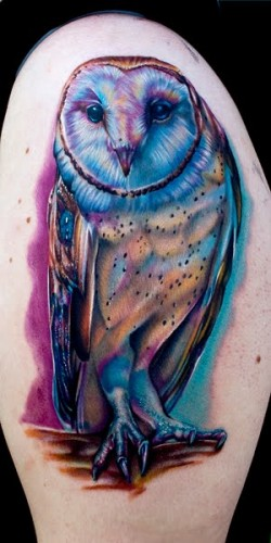 Gorgeous Owl Tattoo On Arm