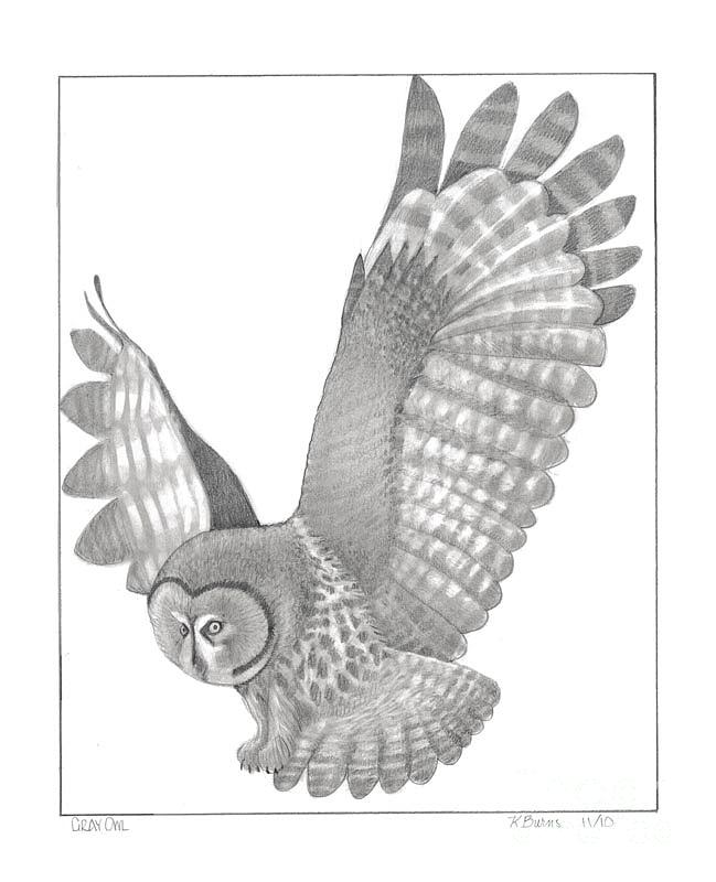 Gray Flying Owl Tattoo Design