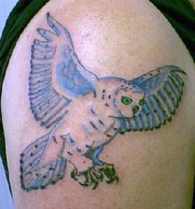 Green Eyed Flying Owl Tattoo On Right Shoulder