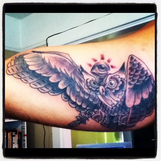 Grey Eye And Flying Owl Tattoos On Inner Arm