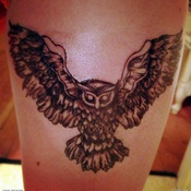 Grey Flying Owl Tattoo
